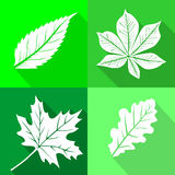 Set of leafs icons Royalty Free Stock Images