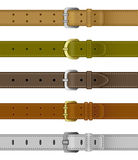 Set of leather belts Stock Images