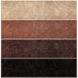 Set of leather labels of different colors Royalty Free Stock Photo