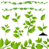 Set Leaves. Set Of Green Leaves And Sprouts, Isolated On White Background, Vector Illustration Stock Photo