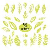 Set leaves1 ilustracji