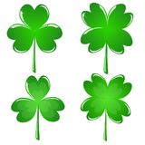 A set of leaves of clover shamrock. For St. Patrick`s Day Stock Photos