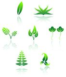 Set of leaves icon Royalty Free Stock Images