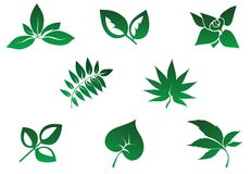 Set of leaves icon Royalty Free Stock Photos