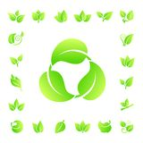 Set of leaves icon vector. Green leaves icon for your work Stock Photography