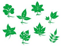 Set of leaves icons Stock Photo