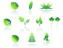 Set of leaves icons Royalty Free Stock Images