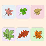 Set of leaves Stock Photography