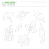 Set of leaves in modern, line style Stock Photography