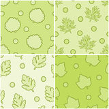 Set leaves seamless. Set of four leaves seamless patterns Stock Photos