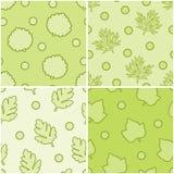 Set leaves seamless. Stock Photos