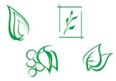 Set of leaves symbols Royalty Free Stock Image