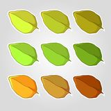 Set of leaves Stock Images