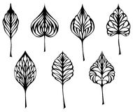 Set of leaves. Vector various ornate black leaves isolated on white background Royalty Free Stock Photo