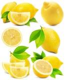 Set of lemons isolated on the white background Royalty Free Stock Photography