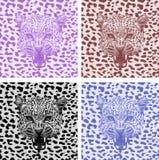 Set leopard print pattern. Set tiger print pattern Royalty Free Stock Photos
