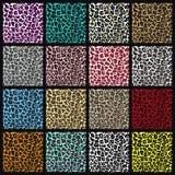Set of leopard seamless patterns. Vector EPS8 illustration Stock Photo