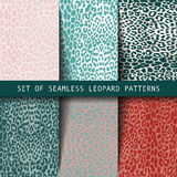 Set of leopard seamless patterns. Vector illustration. Can be used as a fashion print for the fabric Royalty Free Stock Images
