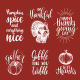 Set of lettering and illustrations for Thanksgiving Day. Vector drawn and handwritten labels of Happy Fall etc. Stock Photography