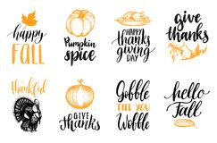 Set of lettering and illustrations for Thanksgiving Day. Vector drawn and handwritten labels of Happy Fall etc. Stock Photos