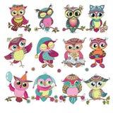 Set 12 ślicznej kolorowej kreskówki sowy Fotografia Stock
