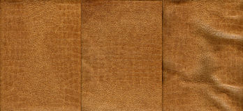 Set of light brown crocodile leather texture. For background Royalty Free Stock Photography
