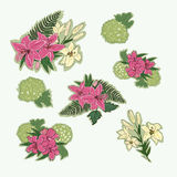 Set of lilies. Background with floral illustration.Decorative flowers vector illustration