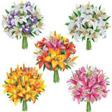 Set of lilies bouquets Stock Image