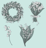 Set of lily of the valley drawings. Hand drawn vector illustration. Royalty Free Stock Photo