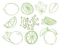 Set of lime vector symbols in sketch style royalty free illustration
