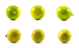 Set of limes and lemons on a white background Stock Photo