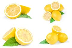 Set of limons isolated on a white background Royalty Free Stock Photo