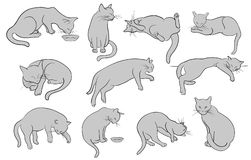 Set of line cats silhouette Royalty Free Stock Photos