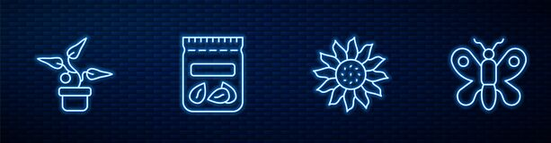 Set line Flower, Plant in pot, Pack full of seeds of plant and Butterfly. Glowing neon icon on brick wall. Vector
