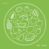 Set of line fruit white icons in circle isolated on green background. Vegan and healthy food. Vector illustration Royalty Free Stock Photography