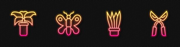 Set line Plant in pot, Exotic tropical plant, Butterfly and Gardening handmade scissors. Glowing neon icon. Vector