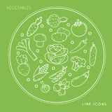 Set of line white vegetable icons in circle isolated on green background. Farm fresh and healthy food. Vector illustration Royalty Free Stock Photos