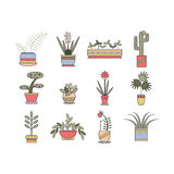 Set of linear botanical icons. Stock Image