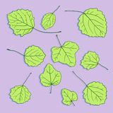Set of linear drawing leaves Stock Image