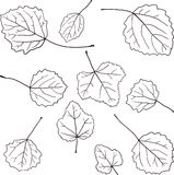 Set of linear drawing leaves Stock Photography