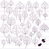 Set of linear drawing leaves at lined paper Royalty Free Stock Photo