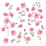 Set of Linen flowers elements. Collection of flower elements isolated on white background. Elegant spring flowers bundle. Vector illustration stock illustration