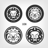 Set of lions Royalty Free Stock Photos