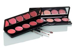 Set of lip gloss and cosmetic brushes  on white. Set of lip gloss and cosmetic brushes  on white background Stock Images