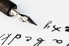 Set listy i czarna atrament stalówka rysunkowy pióro Zdjęcie Royalty Free