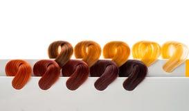 Set of locks of hair Stock Photography