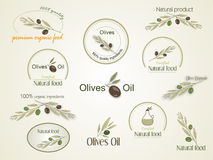 Set Logan organic food olives, vector Stock Photography