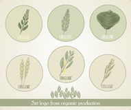 Set logo form organic production, vector Royalty Free Stock Photos