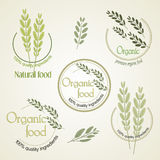 Set logo for organically grown food, vector. Royalty Free Stock Photo