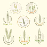 Set logo for organically grown food, vector Royalty Free Stock Photo